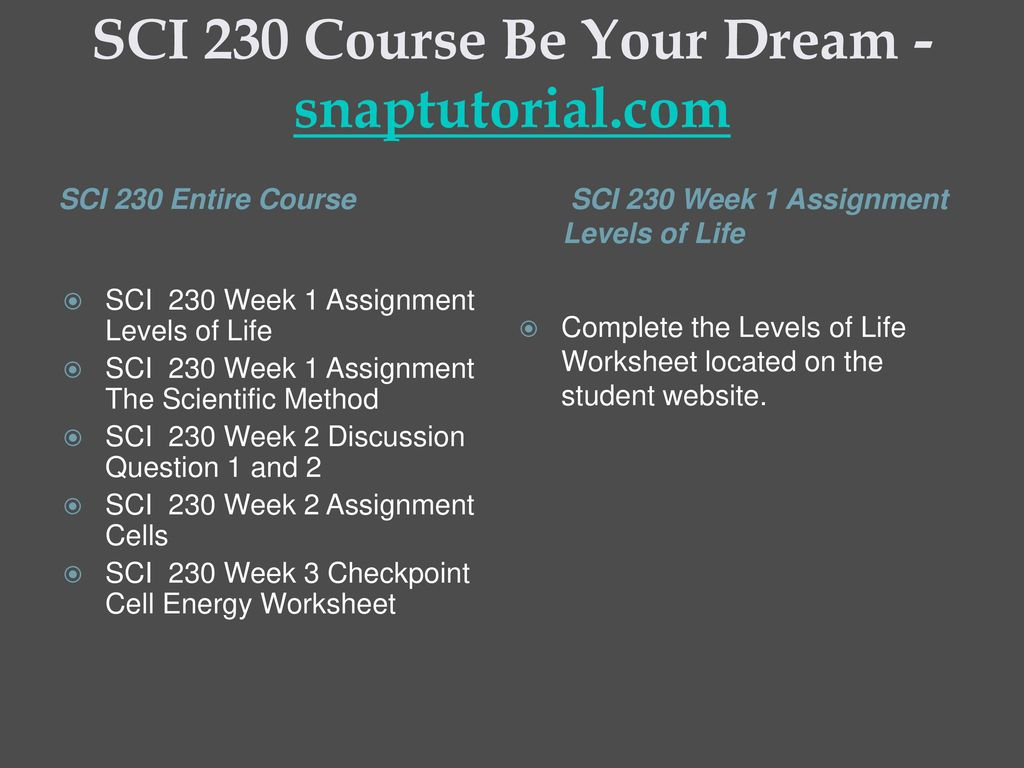 SCI 230 Course Be Your Dream -snaptutorial.com - ppt download