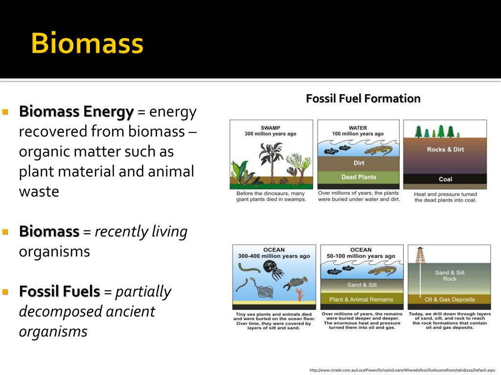 section 1: renewable energy today - ppt download