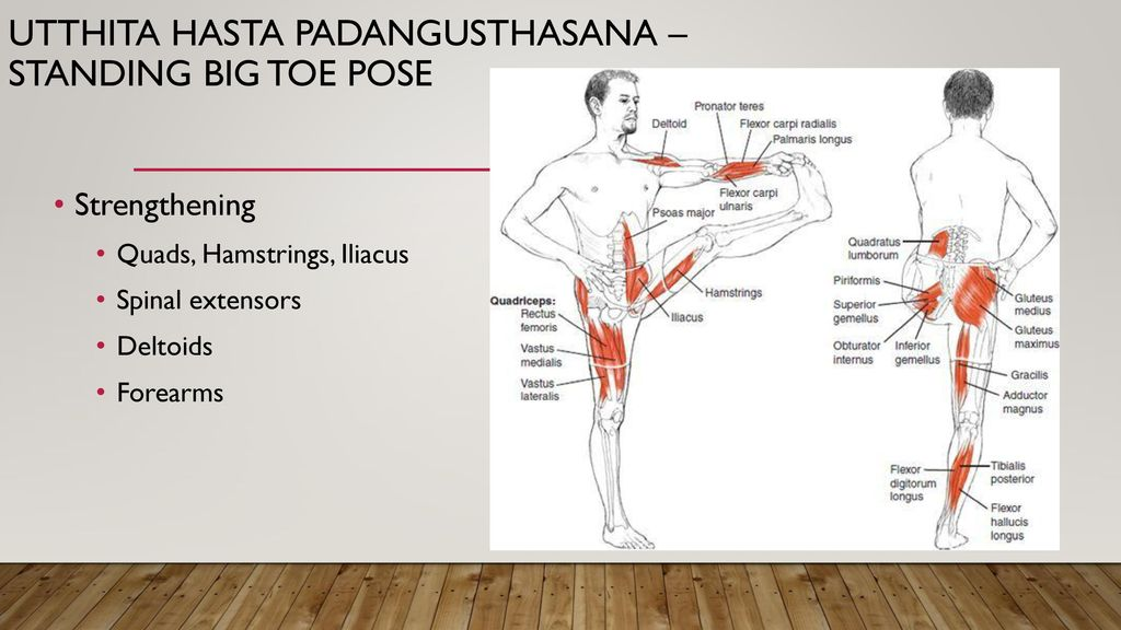 Balancing pose anatomy - ppt download