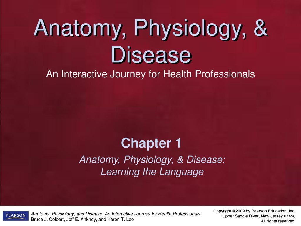 Niedlich Anatomy And Physiology For Health Professionals Galerie ...