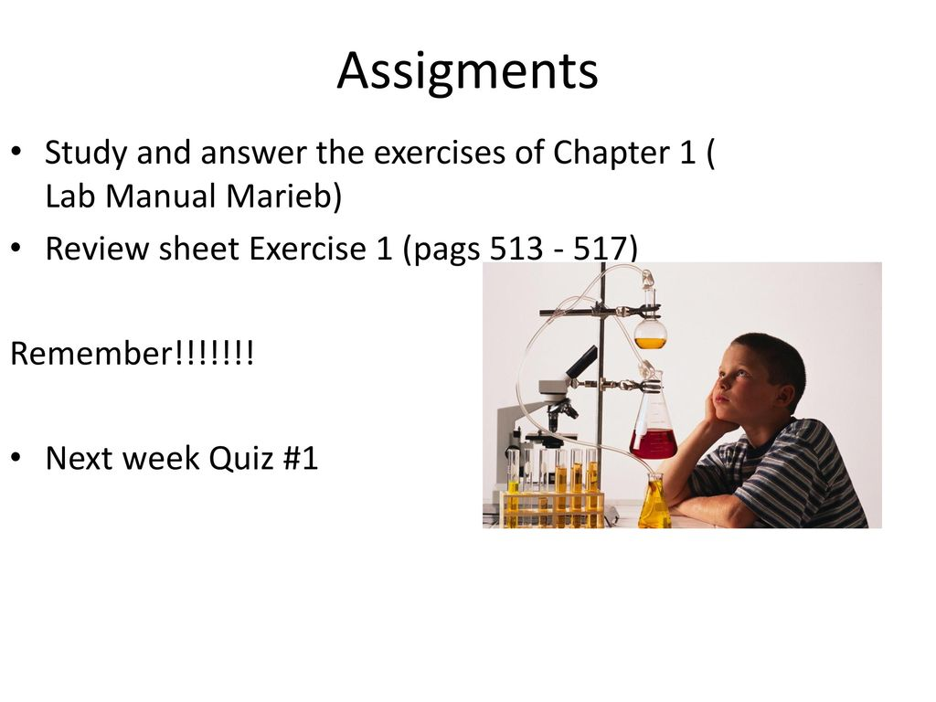 Assigments Study and answer the exercises of Chapter 1 ( Lab Manual Marieb) Review  sheet
