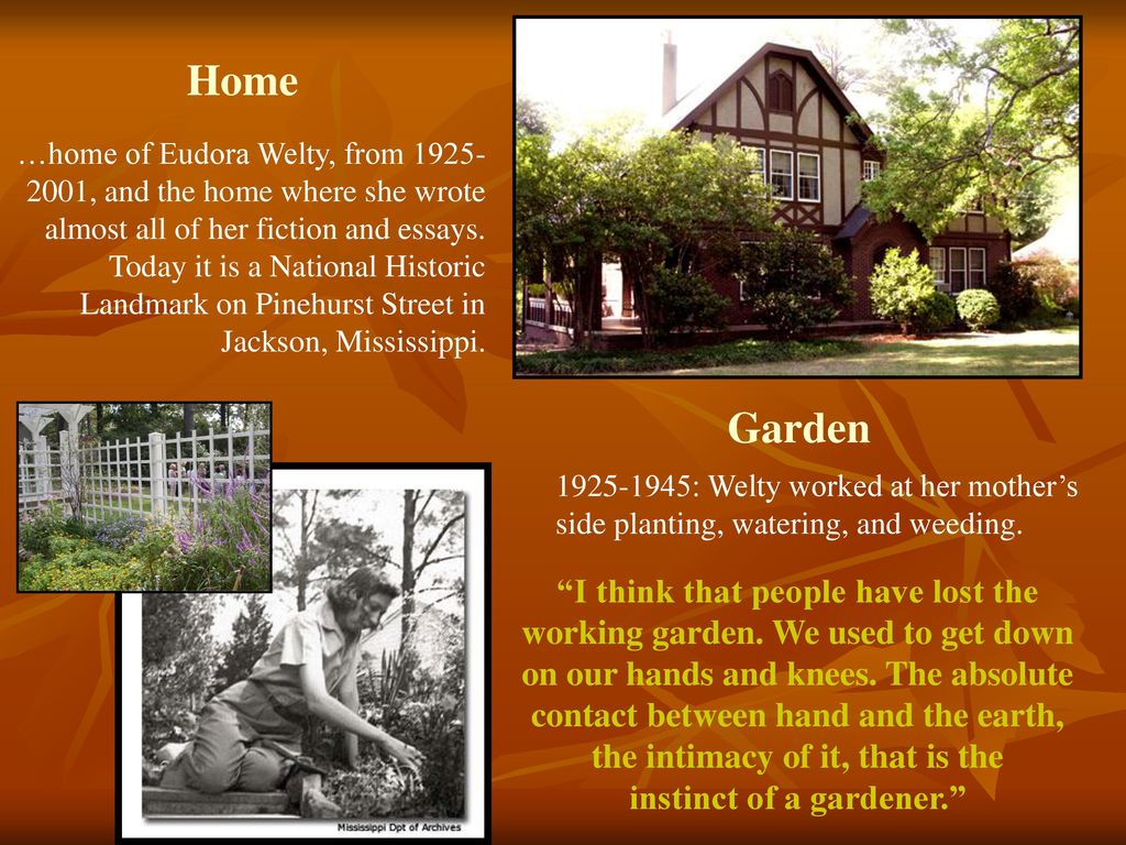 Dorable Jackson Home And Garden Images - Brown Nature Garden ...