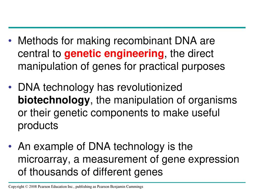 Overview The Dna Toolbox Ppt Download
