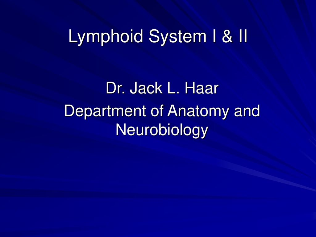 Dr Jack L Haar Department Of Anatomy And Neurobiology Ppt Download