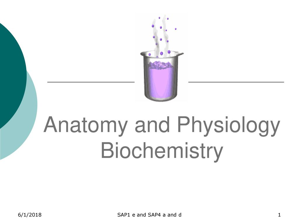 Anatomy and Physiology Biochemistry - ppt download