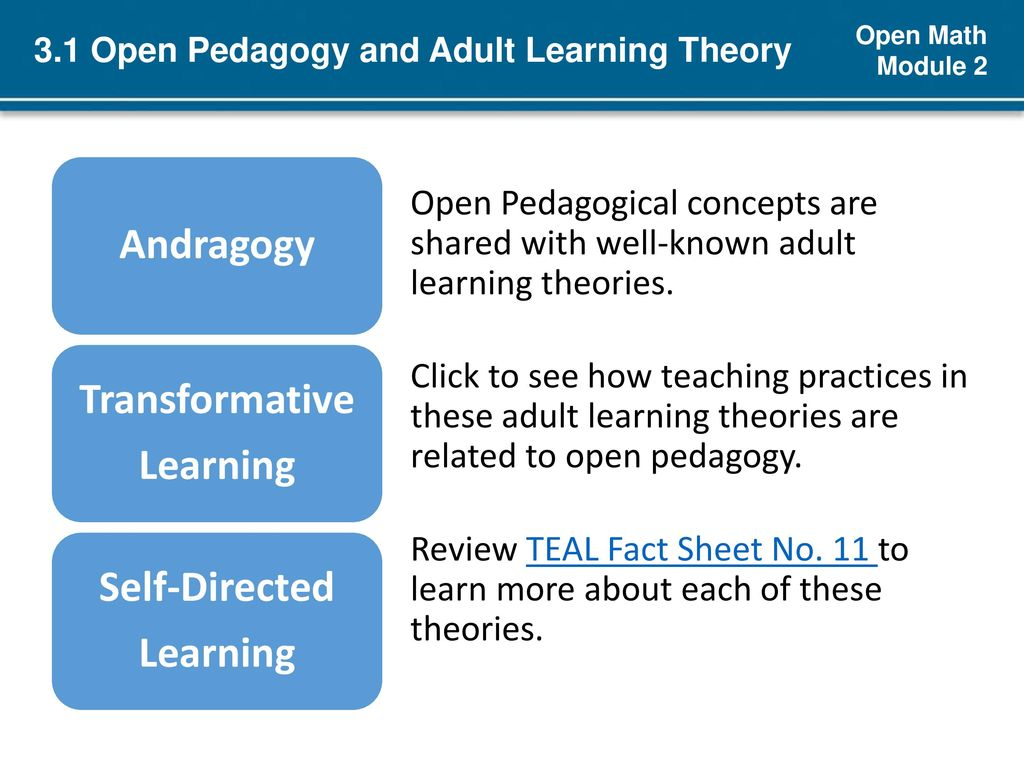 3.1 Open Pedagogy and Adult Learning Theory