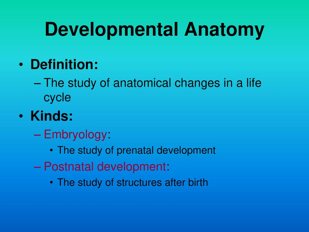 INTRODUCTION TO ANATOMY - ppt download