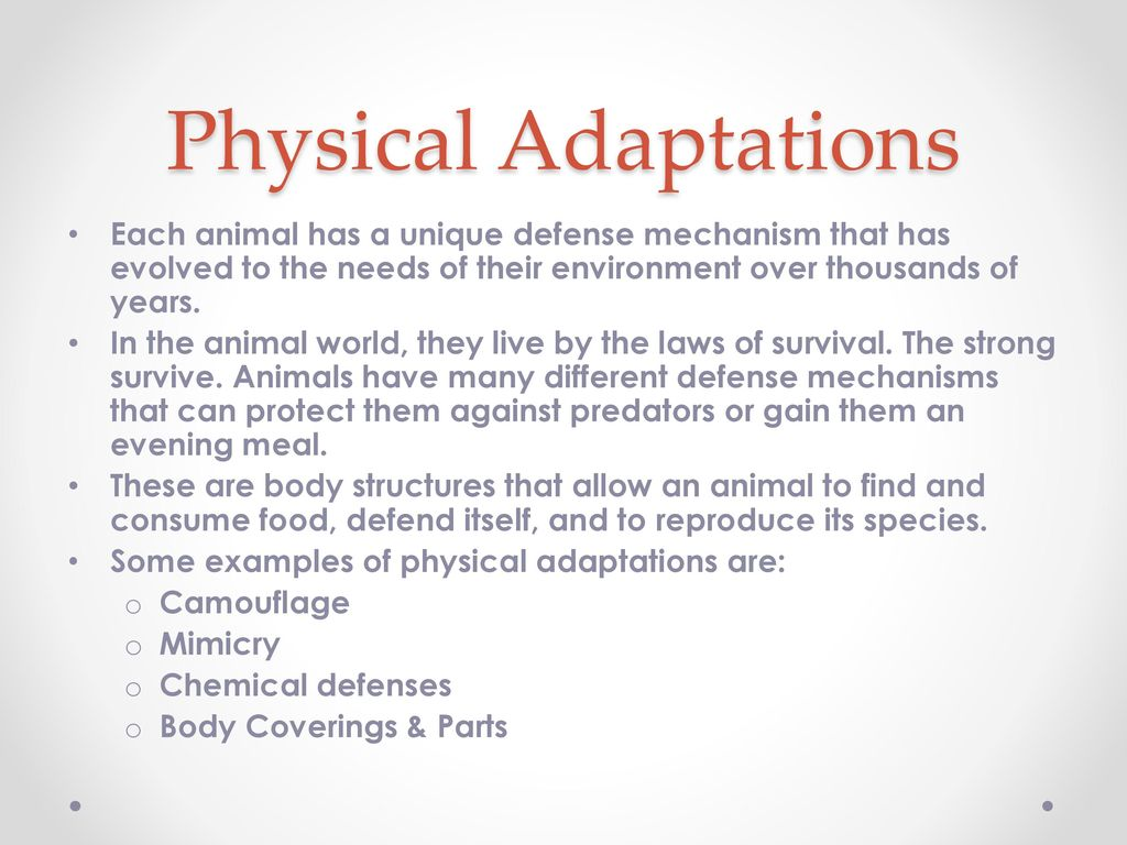 5 Common Defense Mechanisms animal adaptations. - ppt download