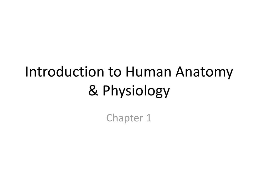Vistoso Introduction Of Anatomy And Physiology Molde - Imágenes de ...