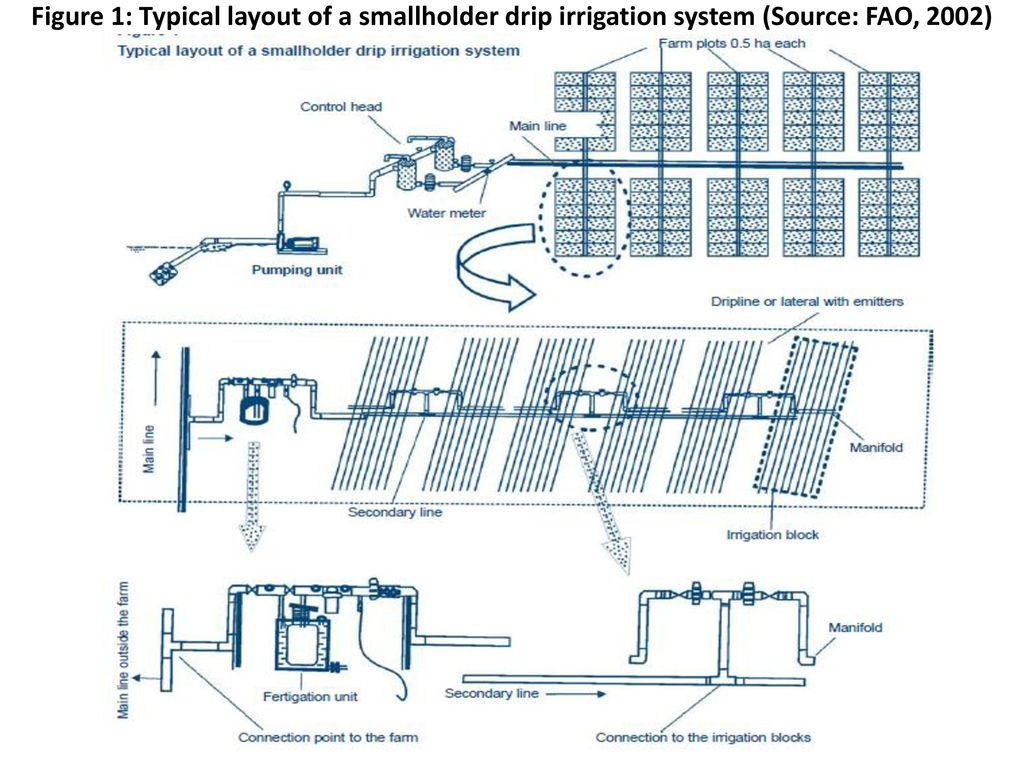 DRIP IRRIGATION DESIGN AND OPERATION PRINCIPLES - ppt download