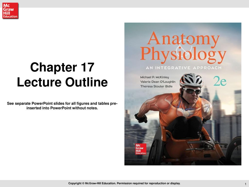 Luxury Mcgraw Hill Anatomy And Physiology Quiz Saladin Vignette ...
