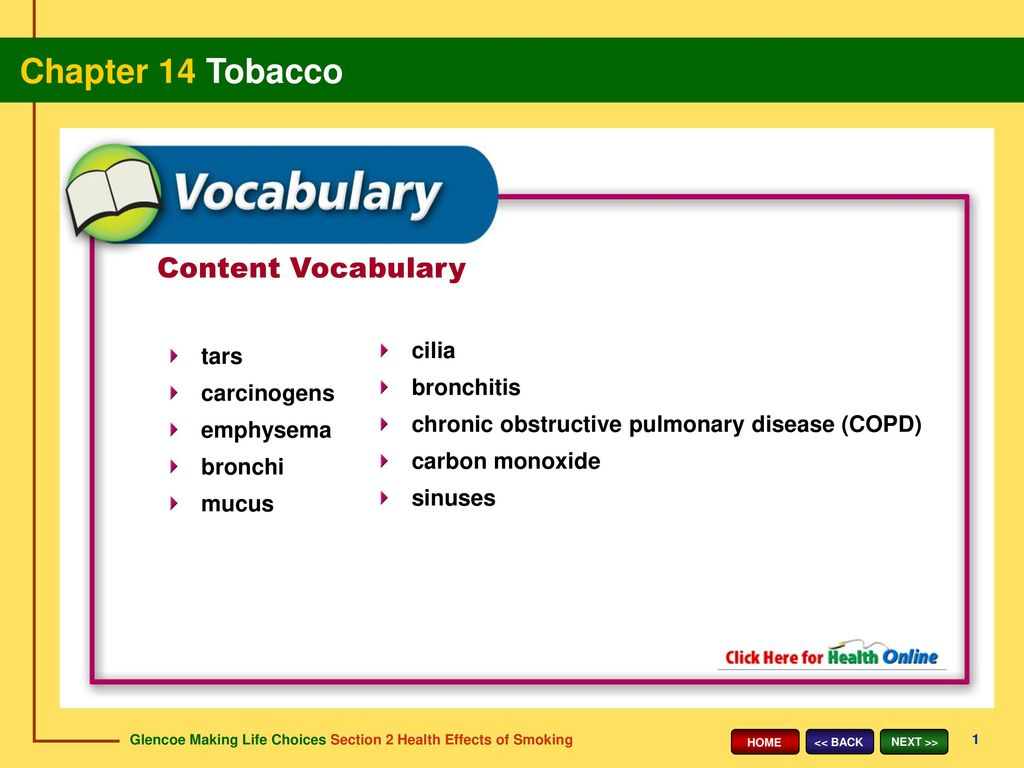 Content Vocabulary cilia tars bronchitis carcinogens - ppt download