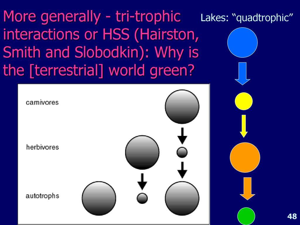 Aquatic Ecology Iii Ann Zimmerman Ppt Download