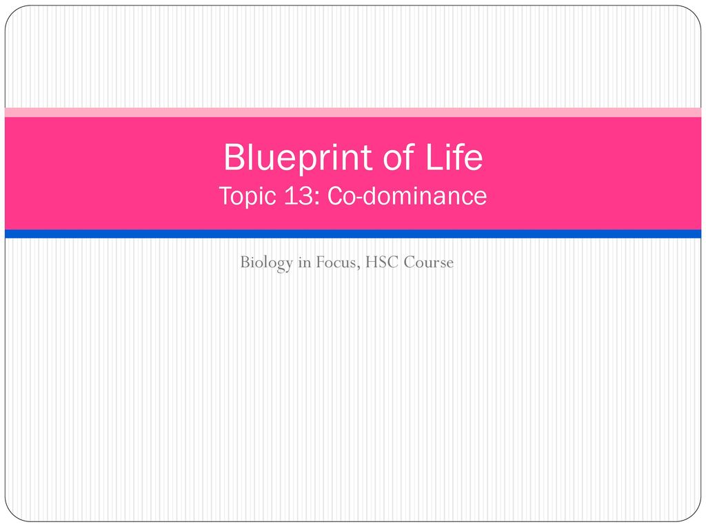 Blueprint of life topic 13 co dominance ppt download blueprint of life topic 13 co dominance malvernweather Image collections