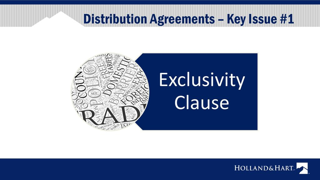 International Distribution And Sales Representative Agreements Ppt