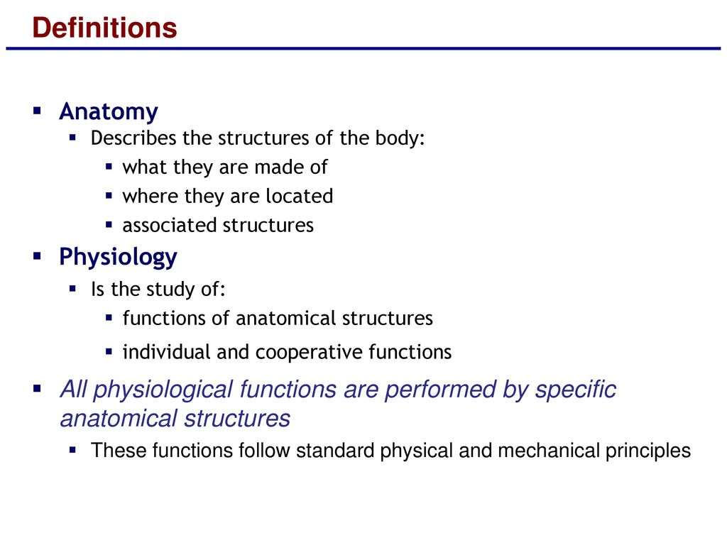 Unique Anatomy And Physiology Definitions Images - Anatomy and ...