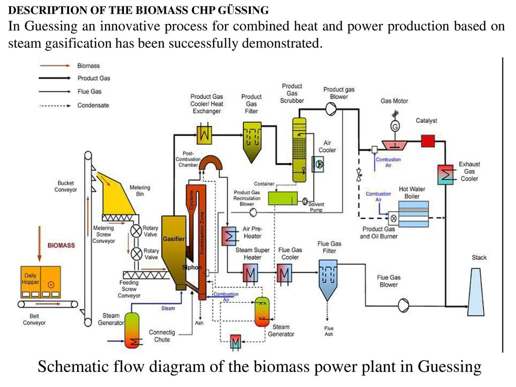 Schematic flow diagram of the biomass power plant in Guessing