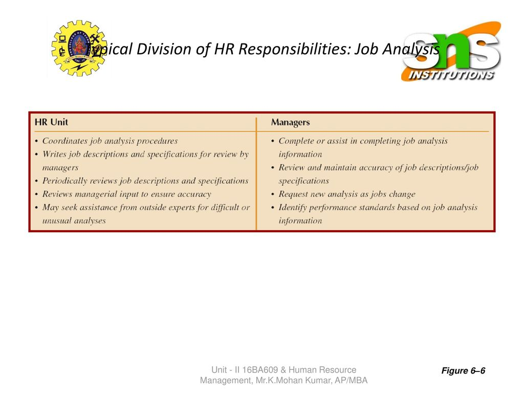 Typical Division Of Hr Responsibilities Jobysis