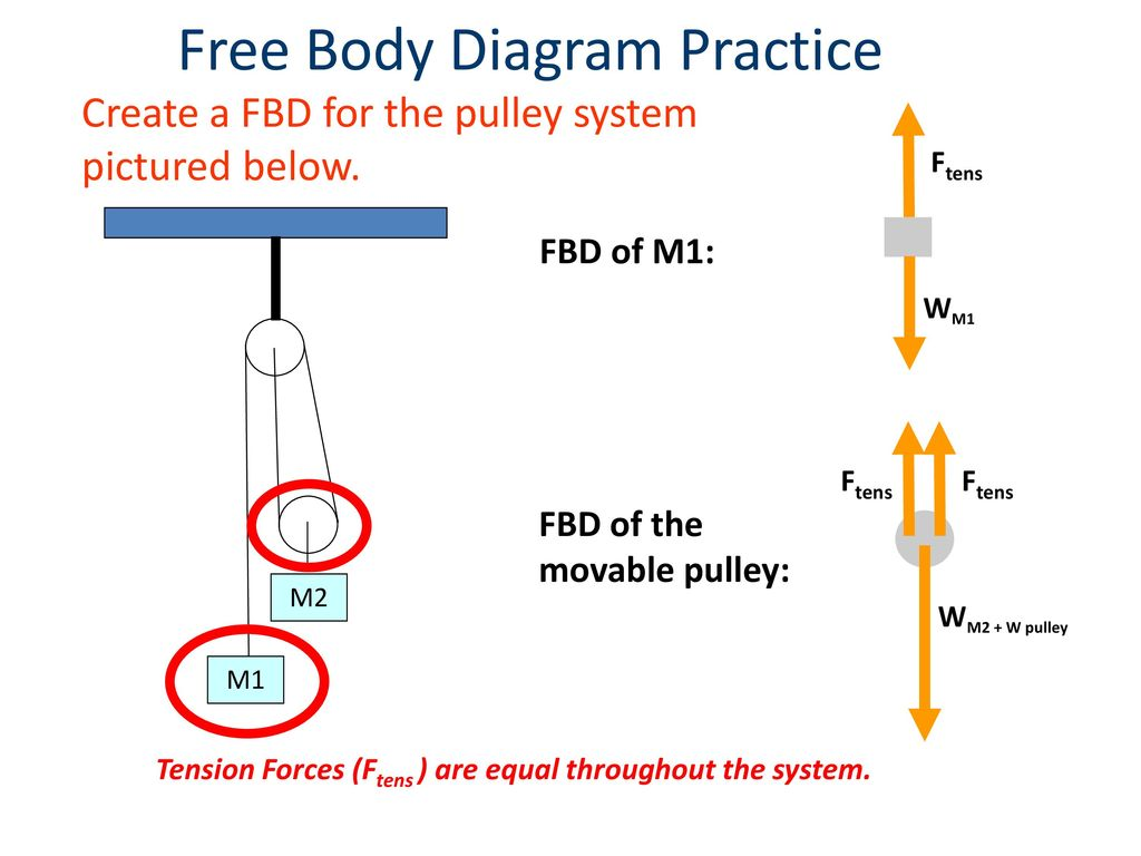Forces And Free Body Diagrams Ppt Download Diagram The Shear Forcediagram Moment 17 Practice