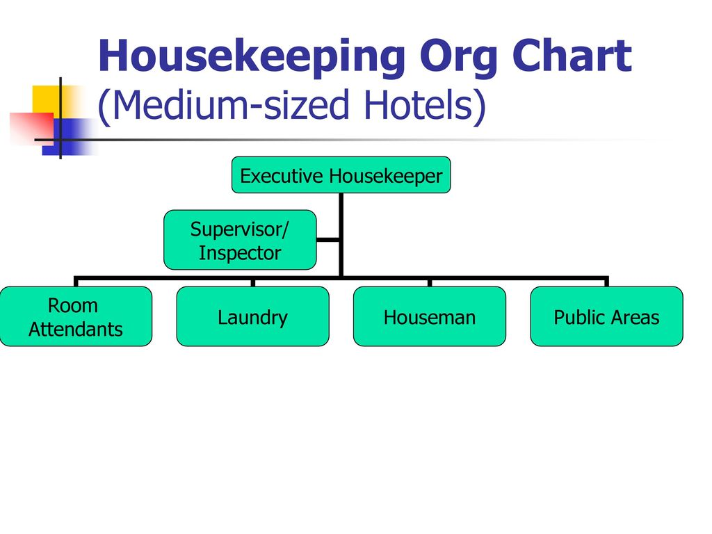 Housekeeping departmenti ppt download 3 housekeeping org chart medium sized hotels thecheapjerseys Image collections