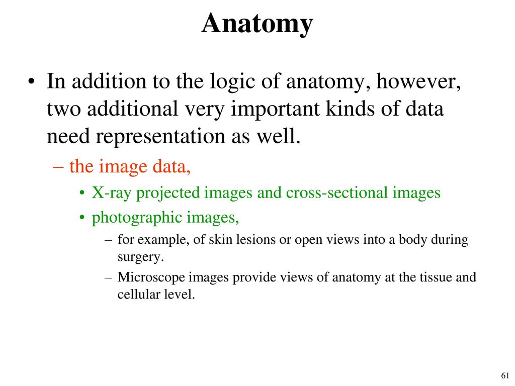 Statistical Data Analysis - ppt download