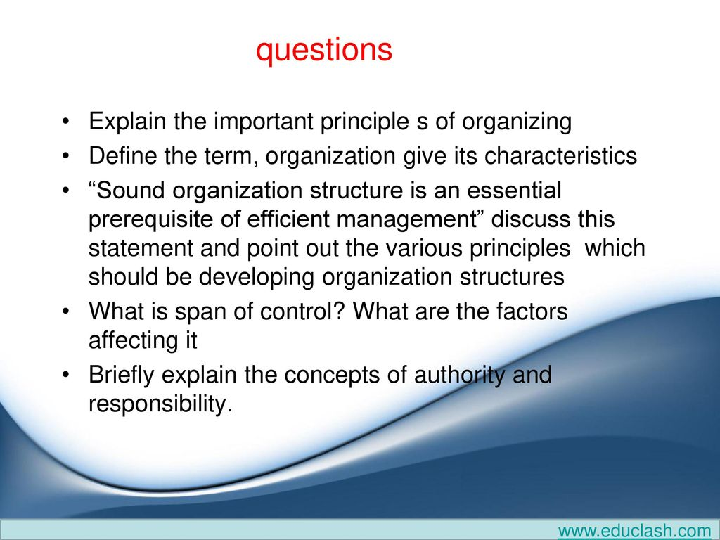 define the principles of organization