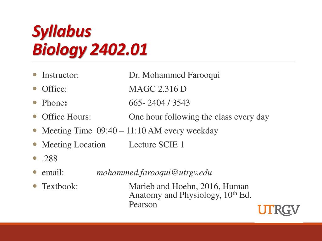 Ungewöhnlich Anatomy And Physiology 2 Syllabus Ideen - Anatomie Und ...