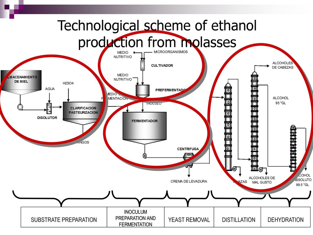 Technological scheme of ethanol production from molasses