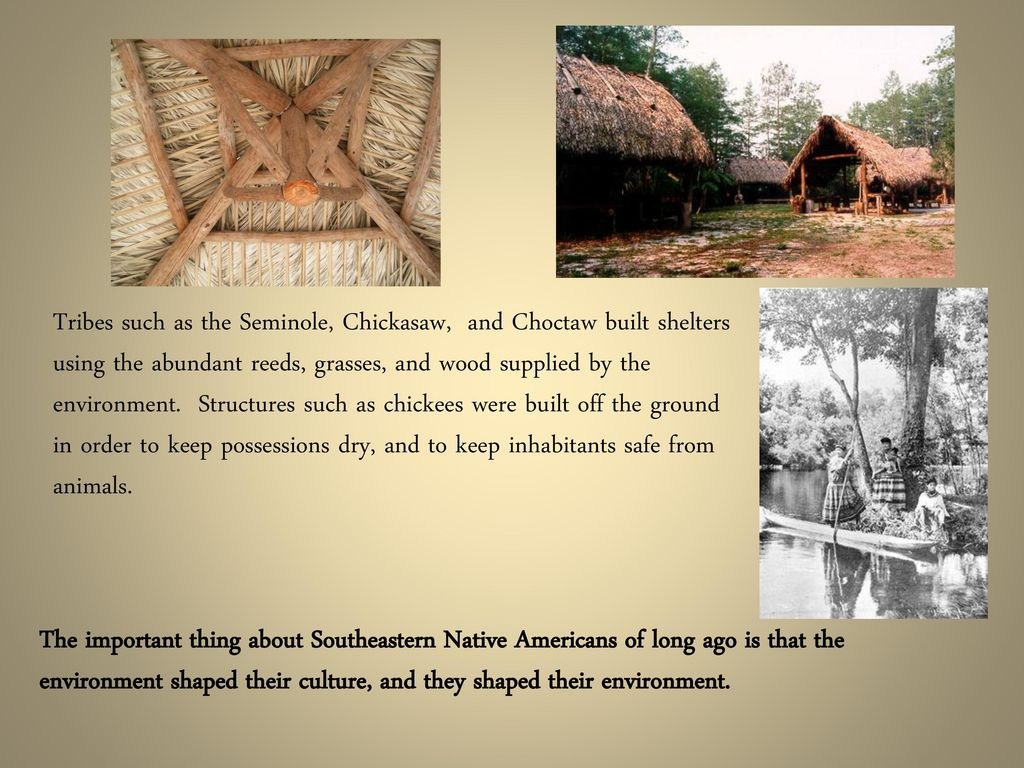 how did the environment shape the southeastern culture