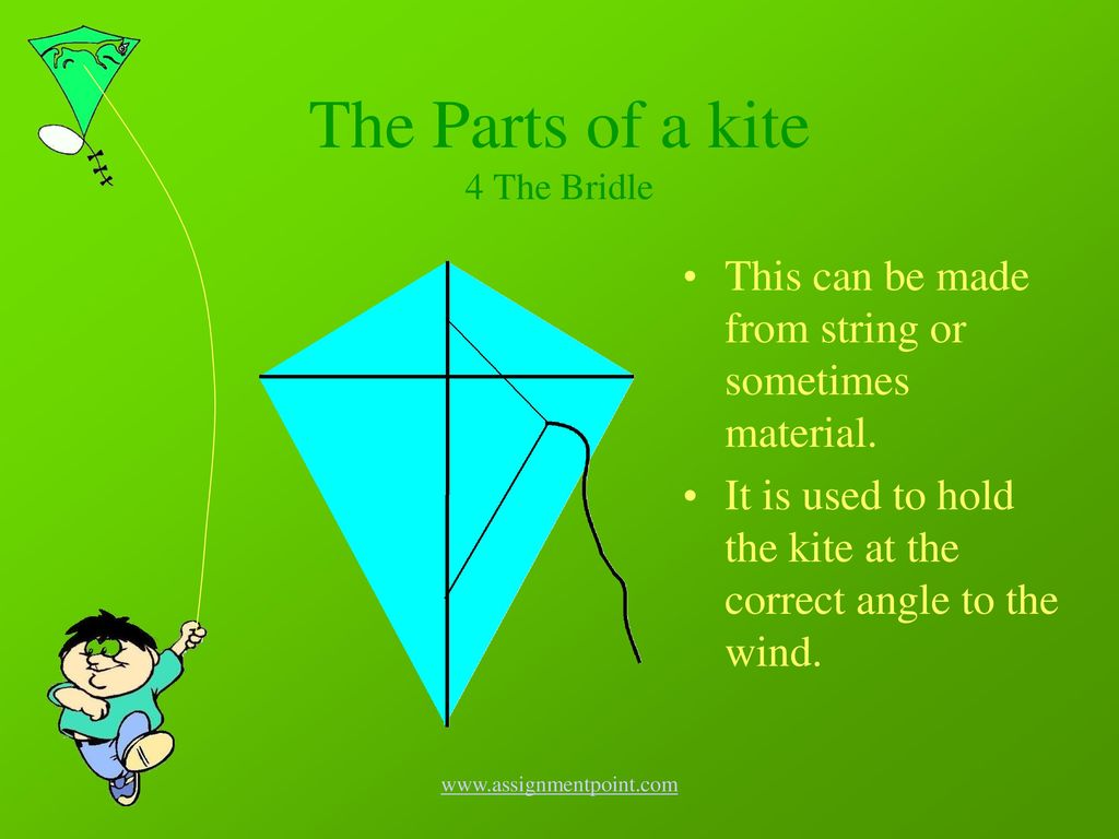 The+Parts+of+a+kite+4+The+Bridle an introduction to kites ppt download