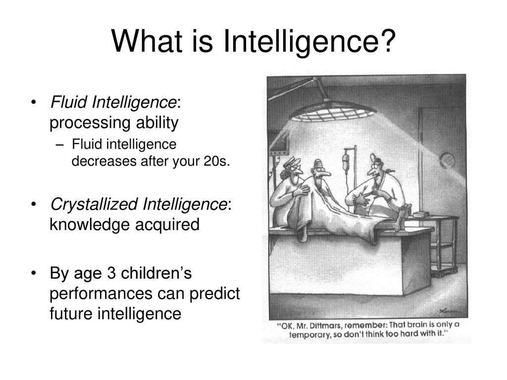 What is Intelligence? Fluid Intelligence: processing ability - ppt