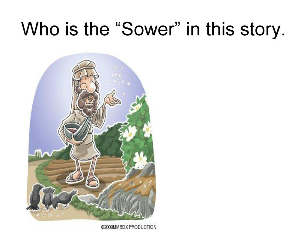 18 x 24 Parable of the Sower Poster Print Luke 8:4-15