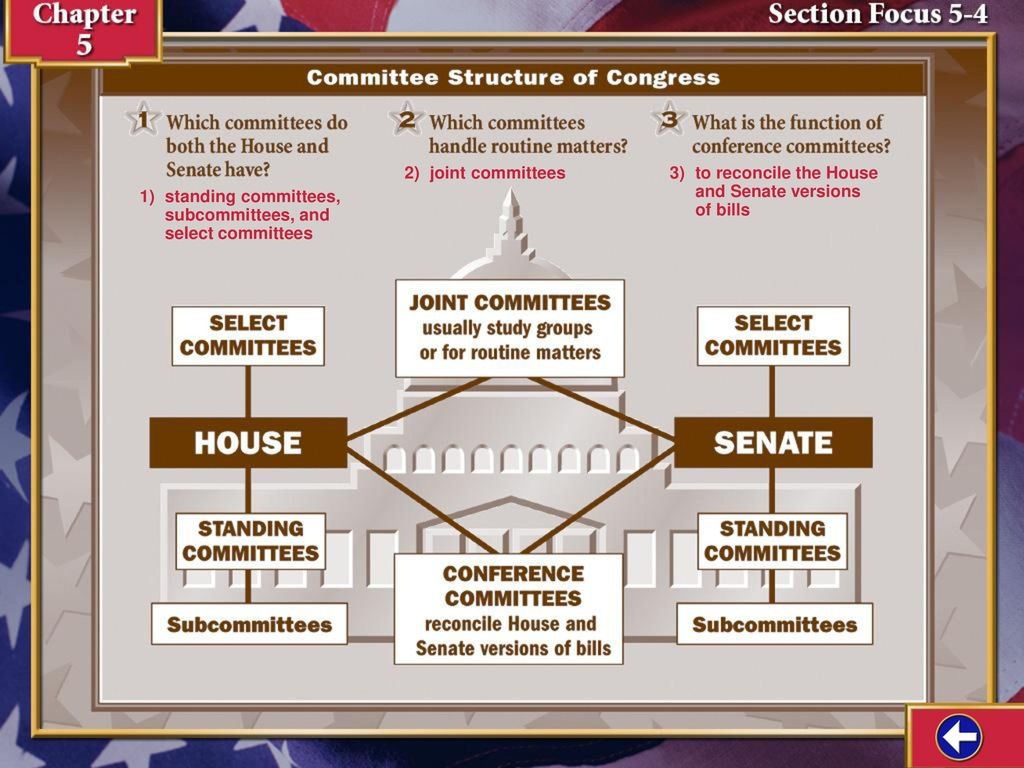 Section Focus 4 2) joint committees