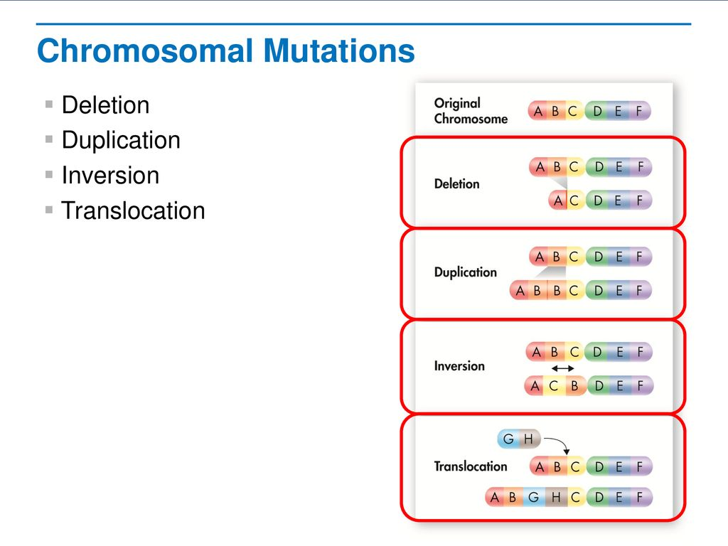 Mutations Read The Lesson Title Aloud To Students Ppt Download