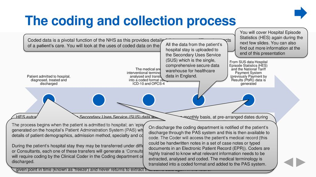 The coding and collection process