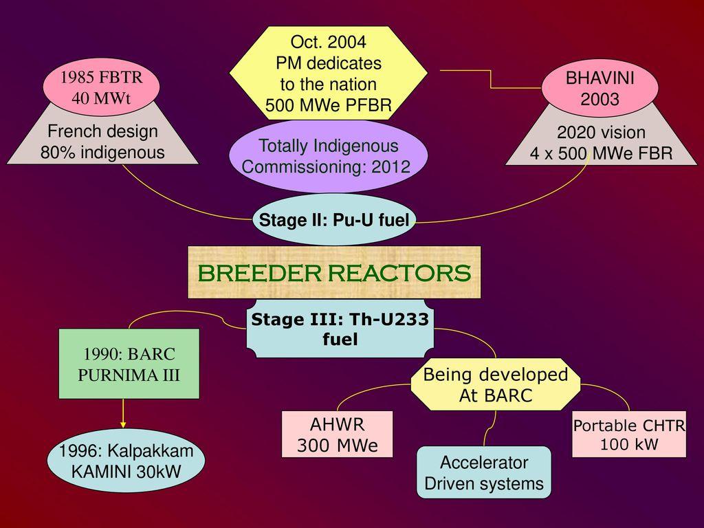 purnima reactor