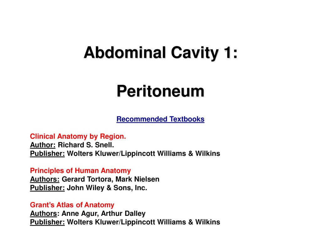 Abdominal Cavity 1 Peritoneum Ppt Download