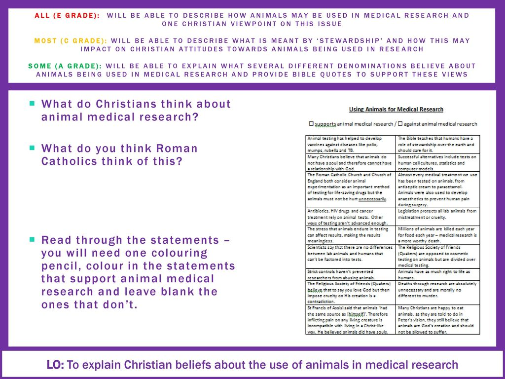 Where Do You Stand On Medical Research On Animals Ppt Download