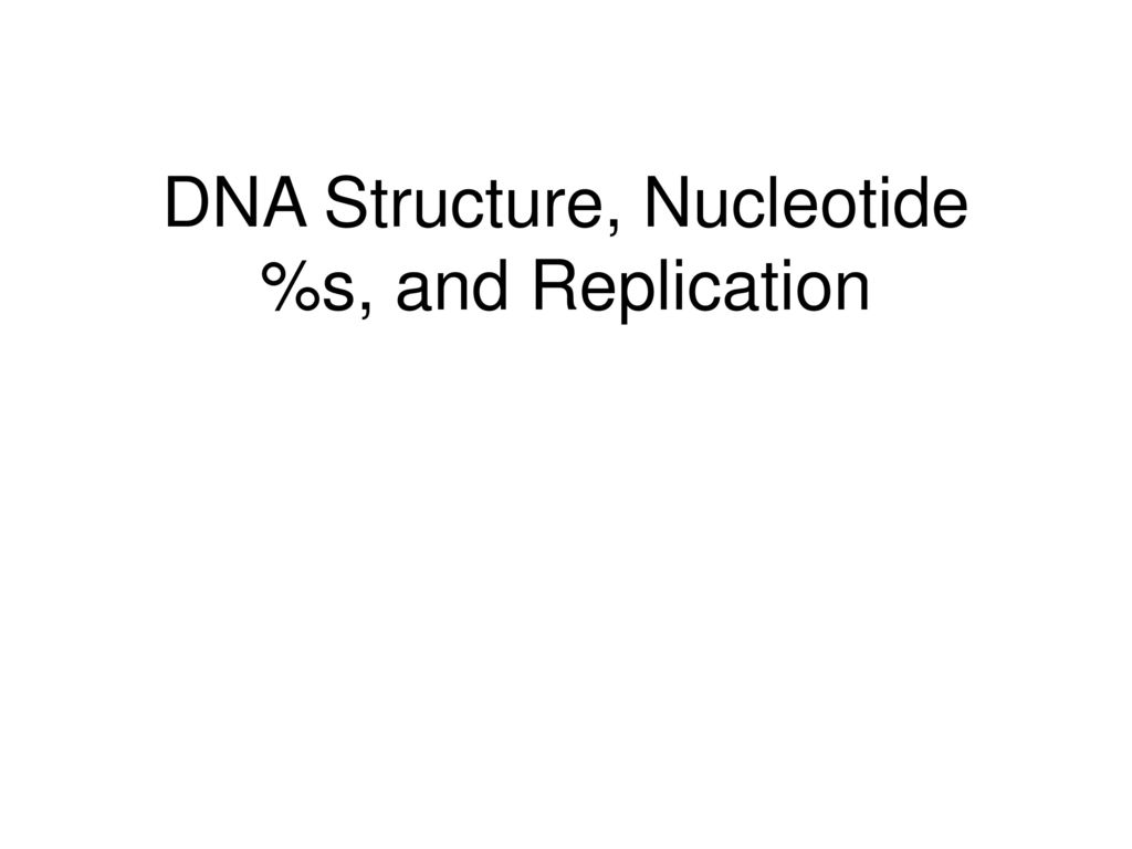 DNA Structure, Nucleotide %s, and Replication