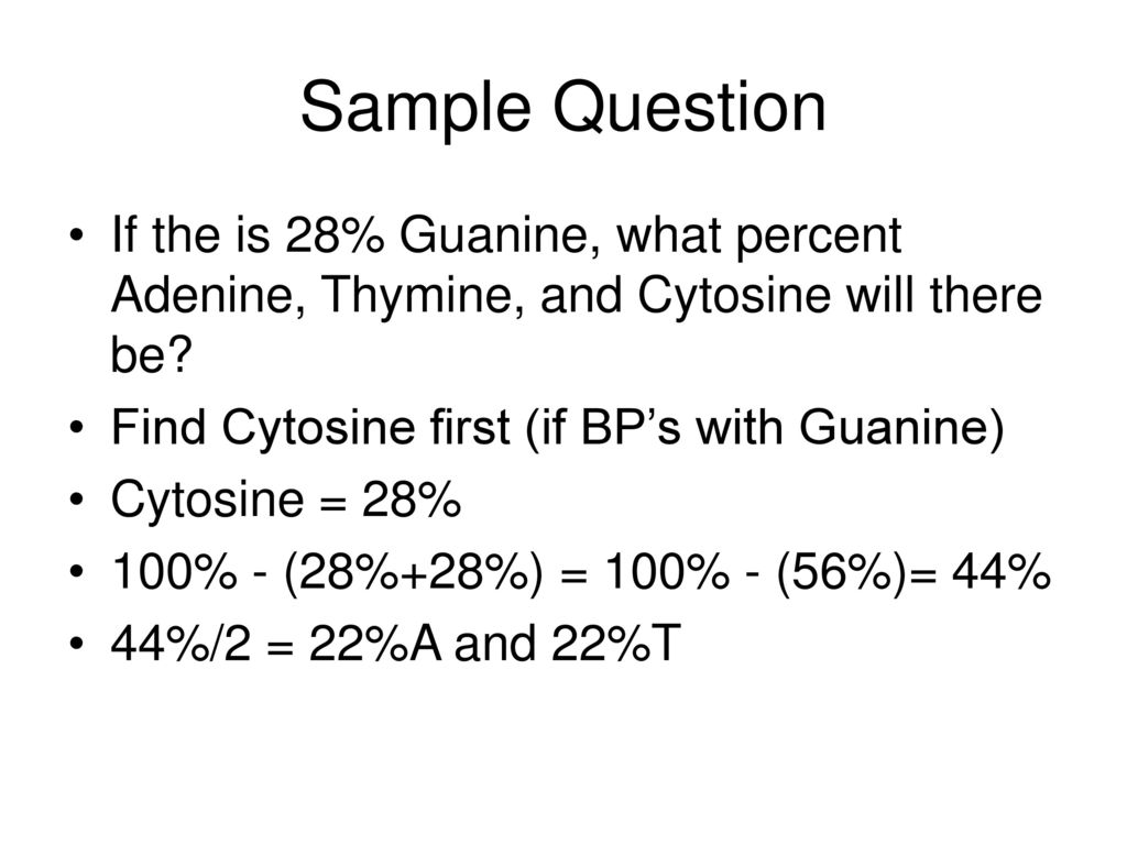 Sample Question If the is 28% Guanine, what percent Adenine, Thymine, and Cytosine will there be Find Cytosine first (if BP's with Guanine)