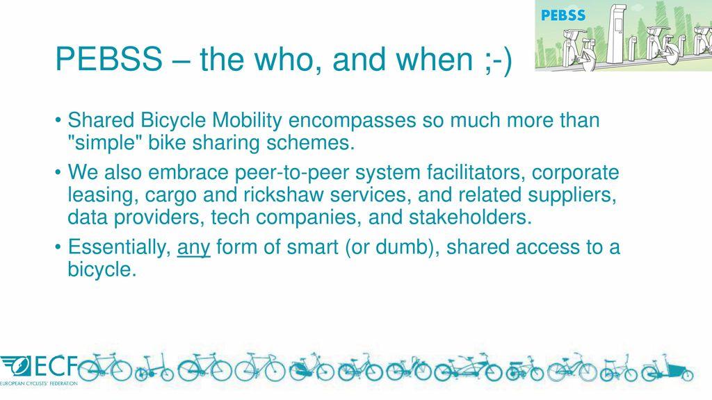 The Commercialisation of Public Bike Share business models