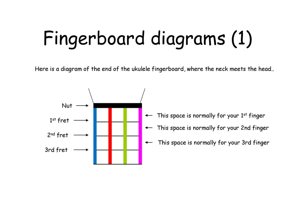 Introducing The Ukulele Ppt Download Diagram Fingerboard Diagrams 1