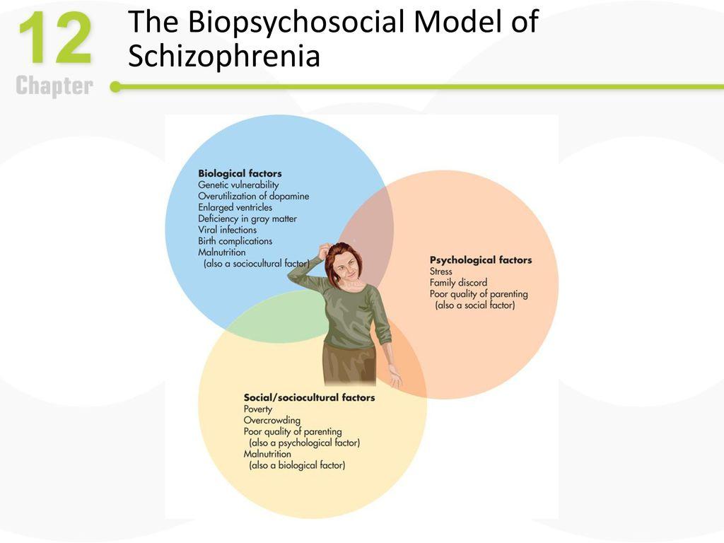 biopsychosocial schizophrenia