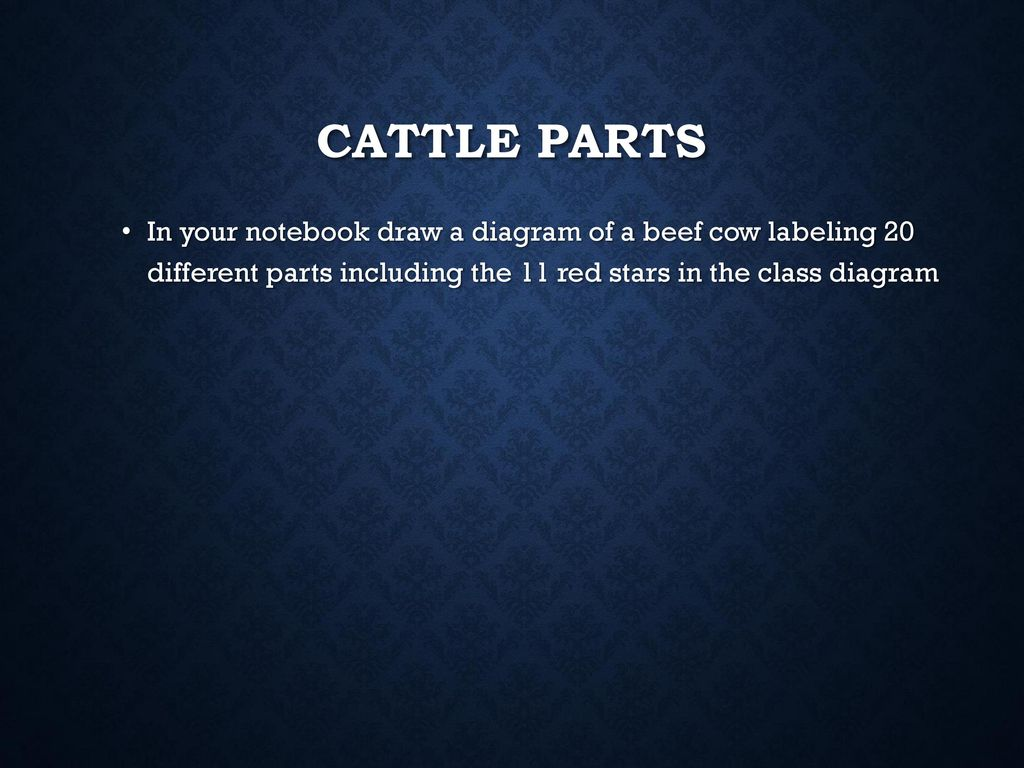 Evaluating Agricultural Animals Ppt Download Parts Of A Laptop Computer Diagram 12 Cattle In Your Notebook Draw