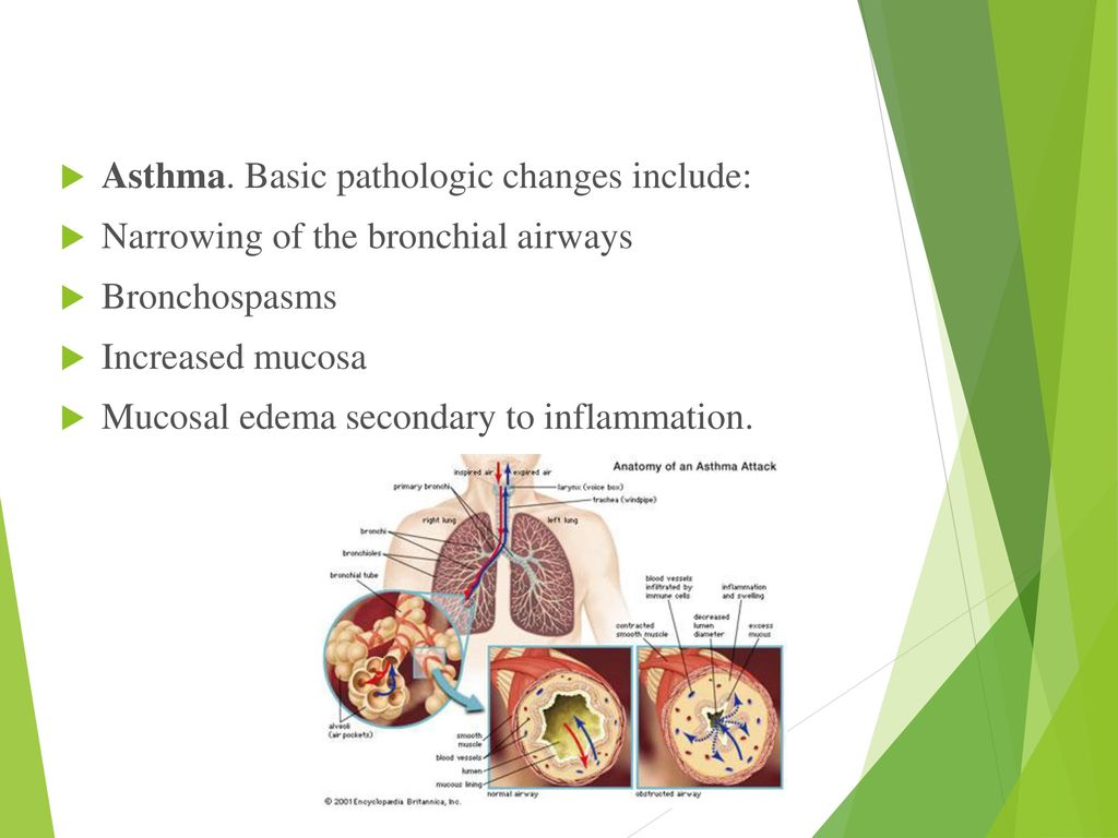 NUR 316 Management of the Diseases in the Respiratory System - ppt ...