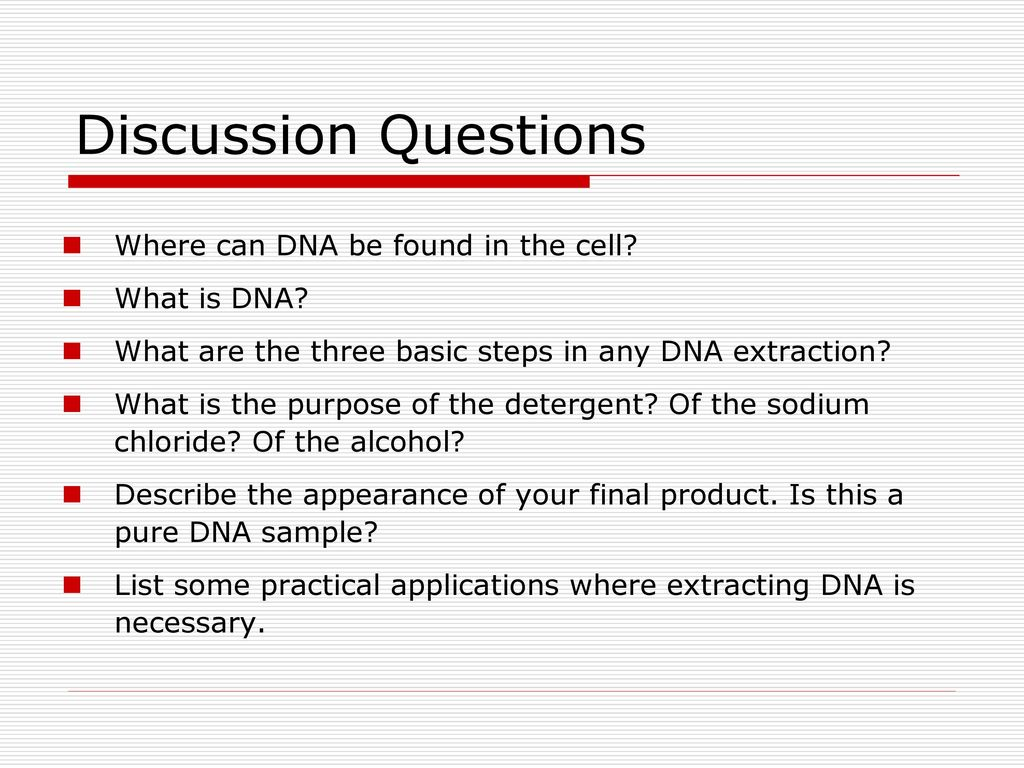 extracting dna from kiwi conclusion