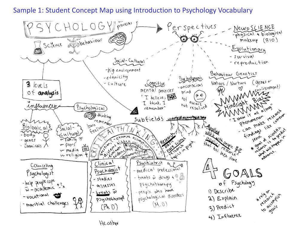 Memory Psychology 40s C Mcmurray Ppt Download
