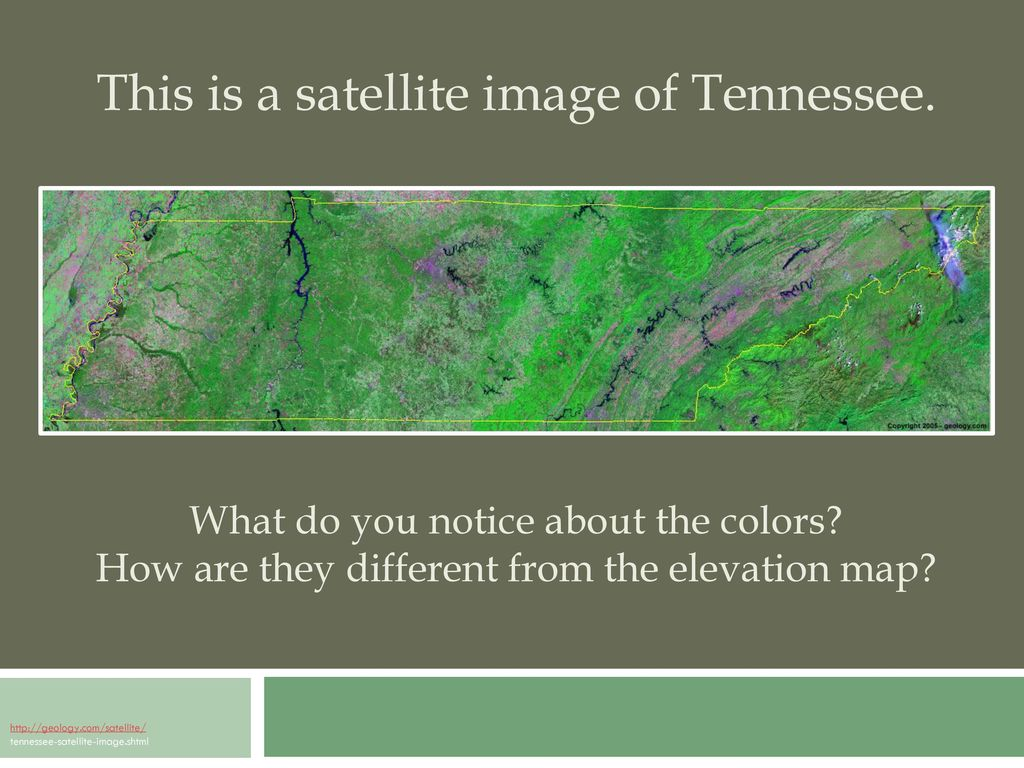 Tn Elevation Map.Focus On Tennessee S Physical Regions Ppt Download