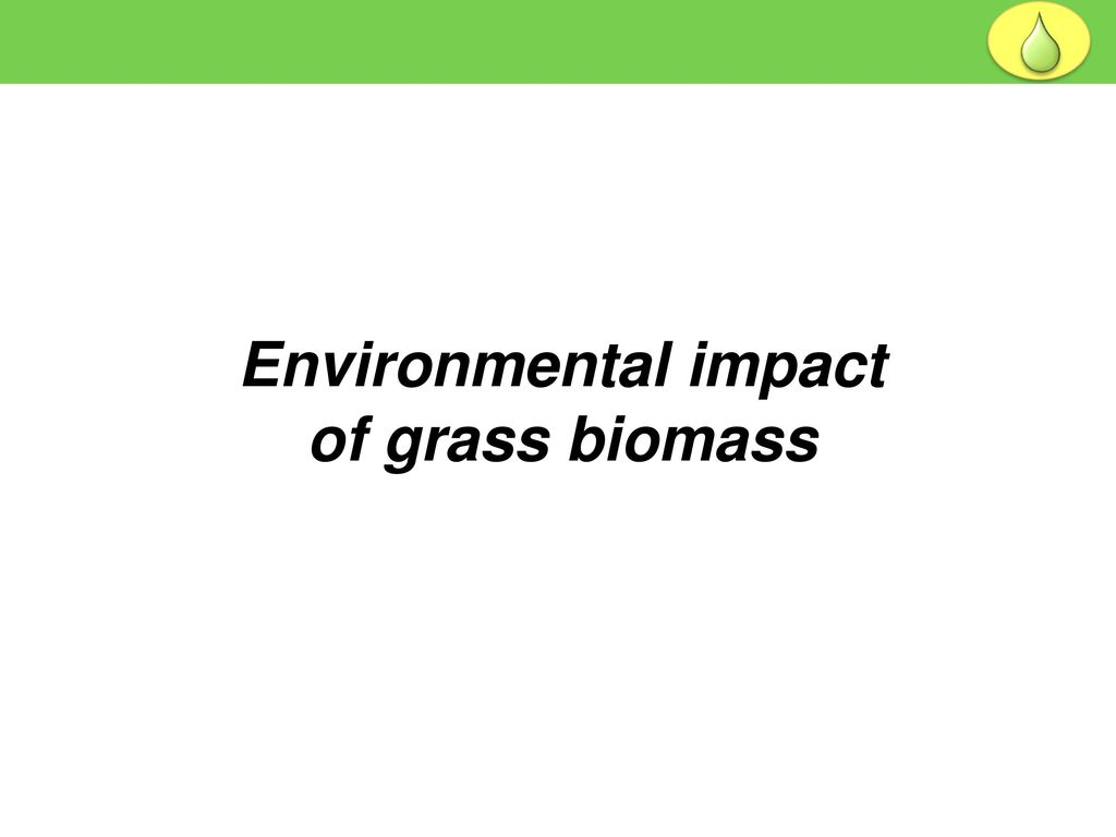 MEC 3040: Bioenergy Module 10: Perennial grass biomass - ppt download