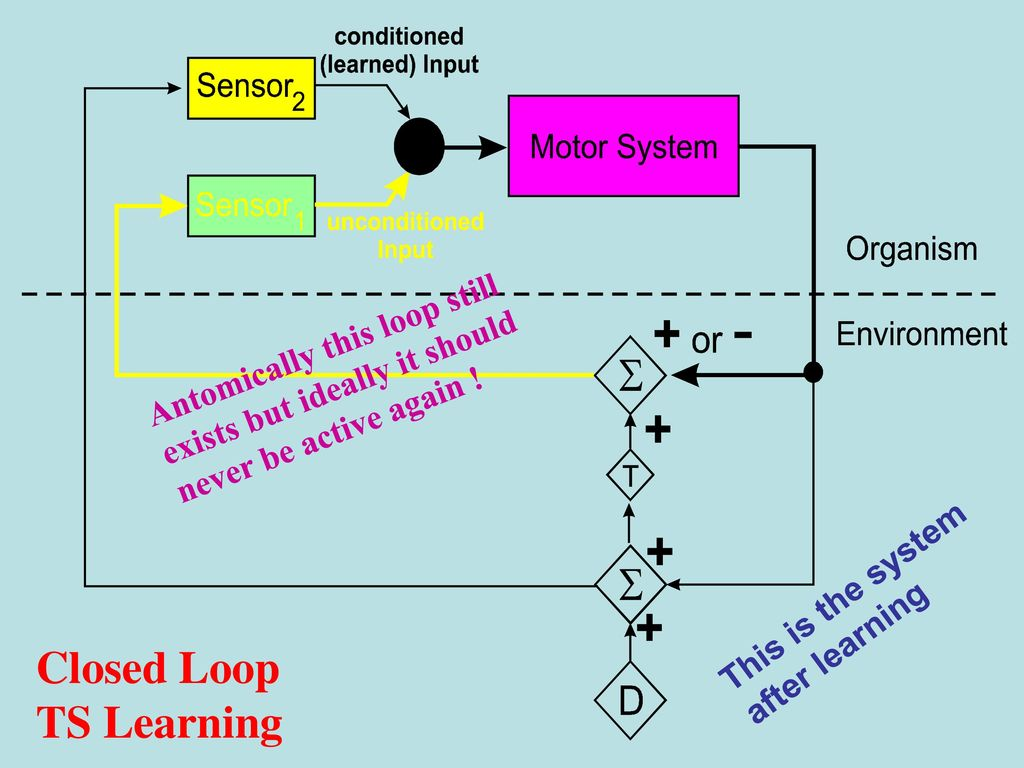 Closed Loop Temporal Sequence Learning - ppt download